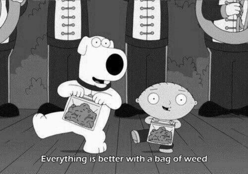 drugs family guy weed funny - 8300996352