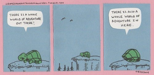 turtles,introverts,web comics