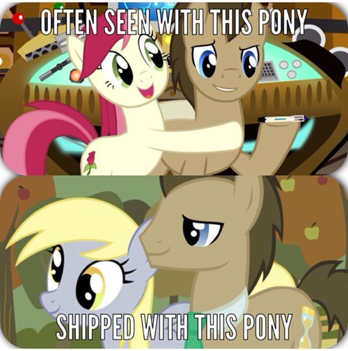 doctor whooves,derpy hooves,brony