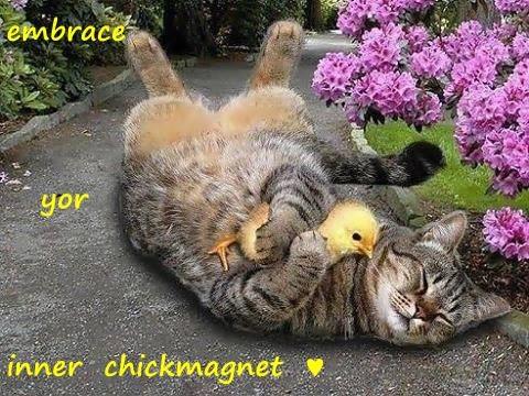 Cheezburger Image 8302426880