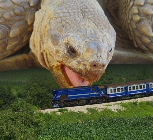 om nom nom,tortoise,train