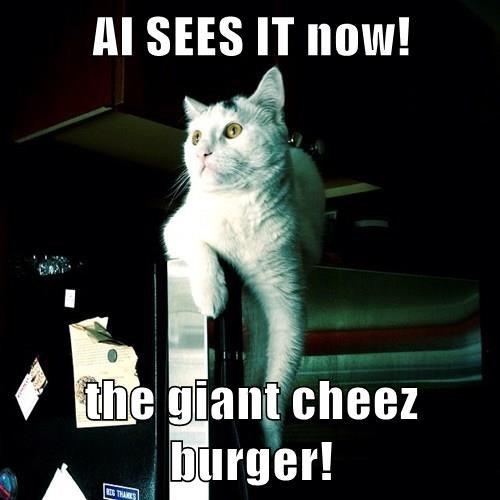 Cheezburger Image 8304392704