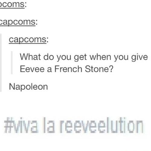 eeveelution,napoleon