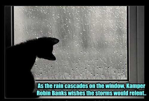 As the rain cascades on the window, Kamper Robin Banks wishes the storms would relent..