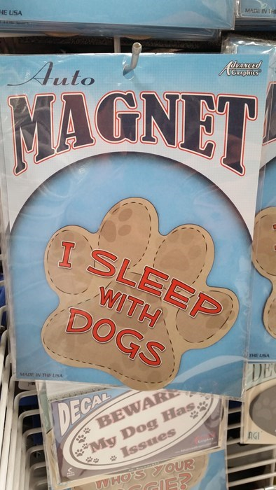 dogs sexy times magnet wtf - 8305830144