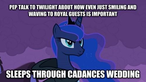 Memes princess luna
