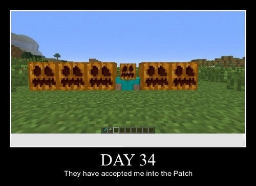 funny minecraft patch wtf - 8306125312