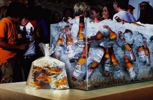 beer fish funny Party - 8306826496