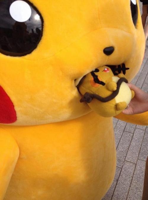 Pokémon pikachu Dedenne - 8307941120