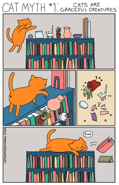 bookshelf library Cats web comics - 8308019712