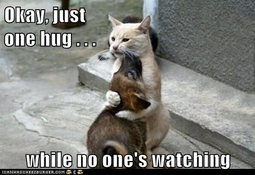 Okay, just one hug . . . while no one's watching