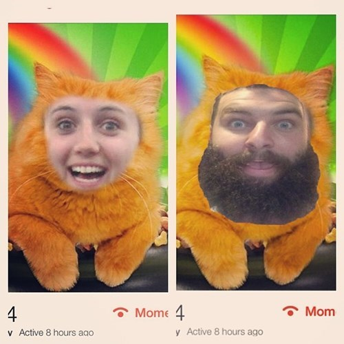 2 panel picture guy ans girl's face photoshopped onto cat body in front of rainbow