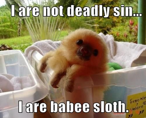 seven deadly sins,squee,sloth