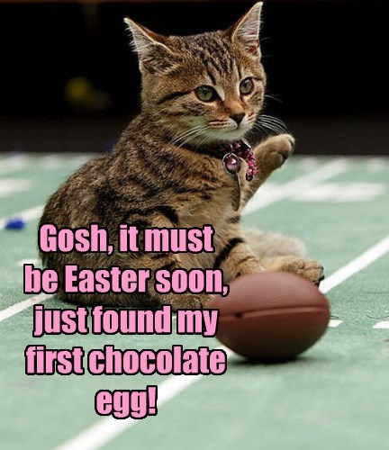 Gosh, it must be Easter soon, just found my first chocolate egg!