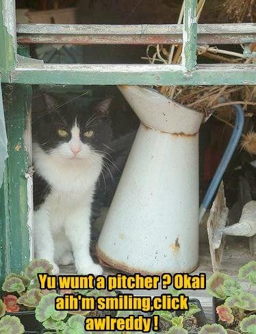 Yu wunt a pitcher ? Okai aih'm smiling,click awlreddy !