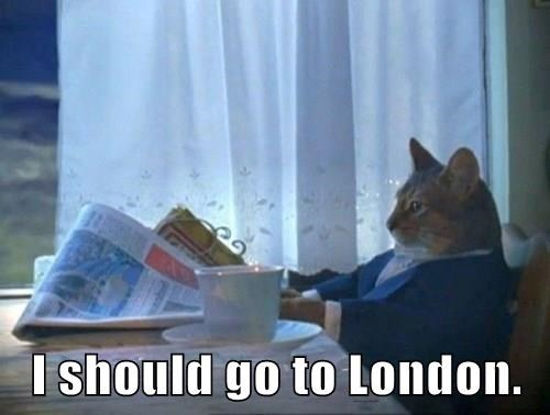 I should go to London.