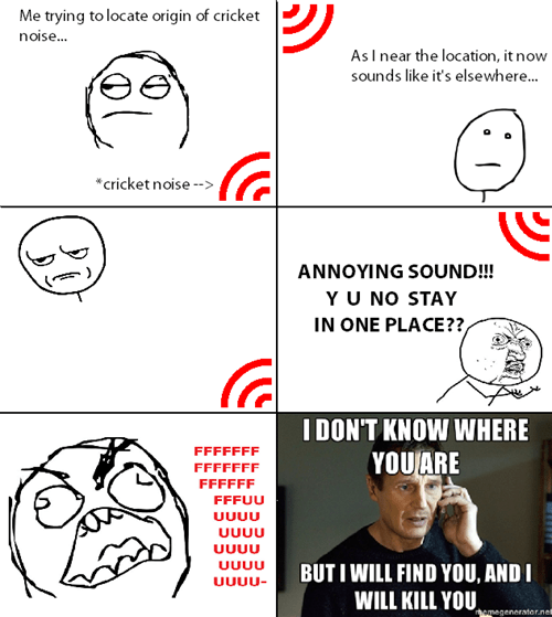 taken rage Y U NO noise sound - 8312147200