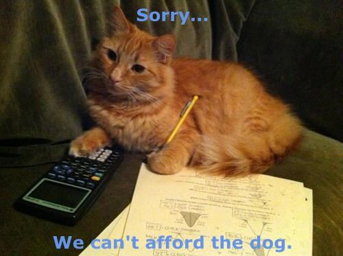 dogs,Cats,math