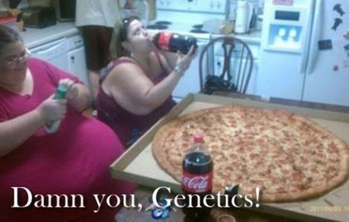 Genetics,pizza,obesity