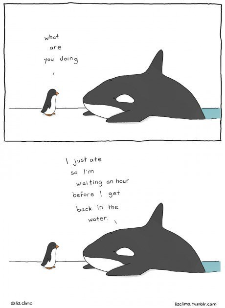penguins critters swimming whales web comics - 8312840960