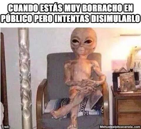 bromas Memes - 8312866816