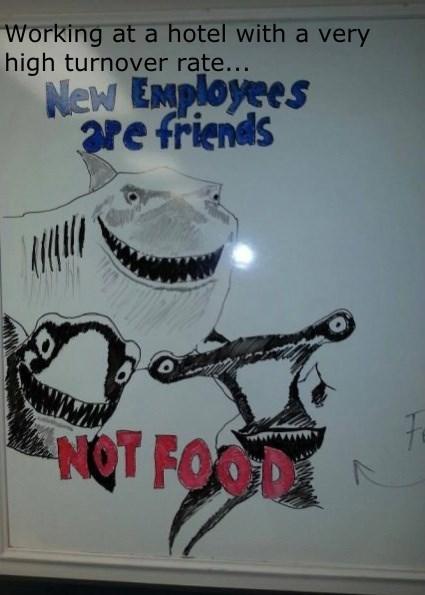 monday thru friday hotel whiteboard shark finding nemo - 8312882944