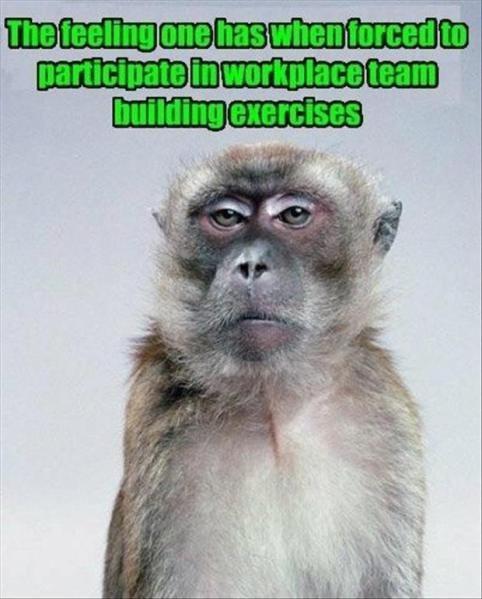 monday thru friday expression teamwork - 8312966912