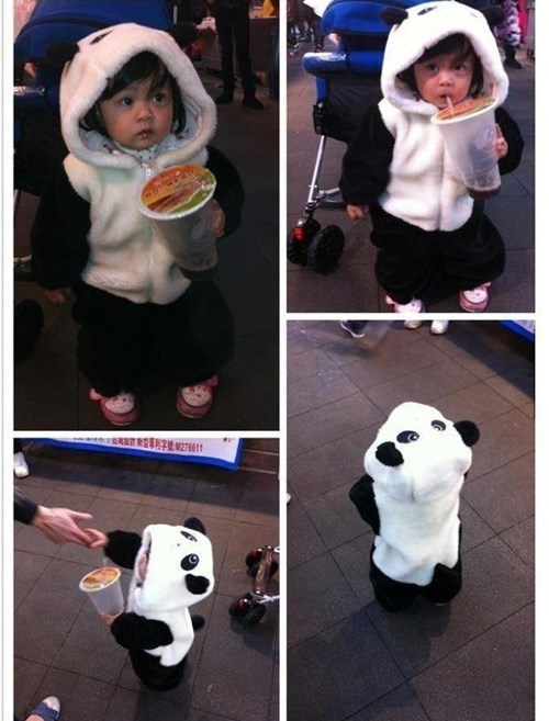 panda,kids,cute,parenting