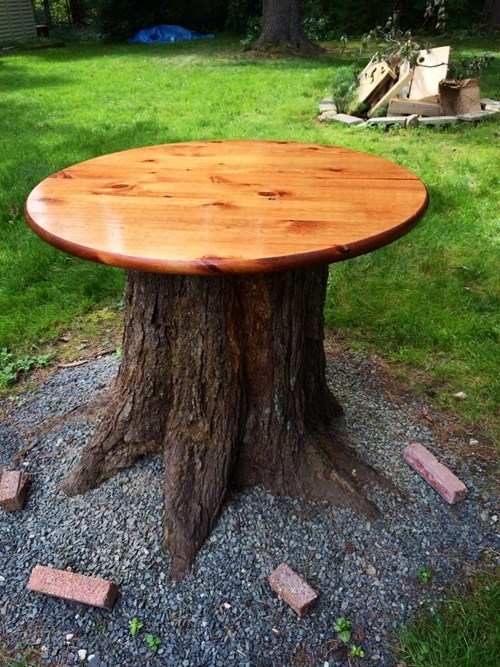 furniture table tree stump