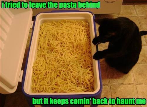puns tags spaghetti - 8314706432