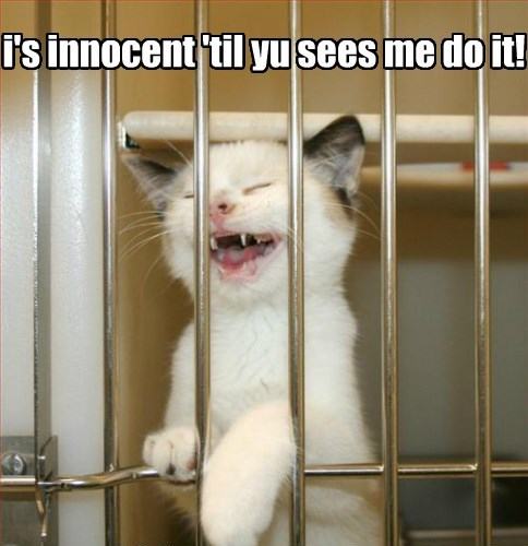 i's innocent 'til yu sees me do it!