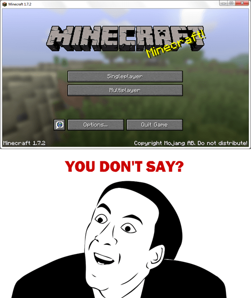 minecraft,you dont say