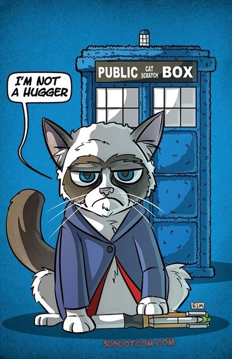 12th Doctor,Fan Art,Grumpy Cat