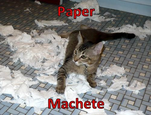 Cats,superheroes,toilet paper