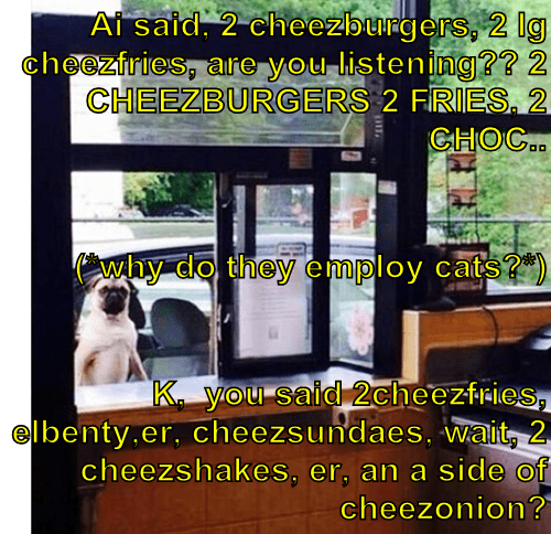 Cheezburger Image 8315680000