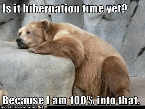 Is it hibernation time yet? Because I am 100% into that.