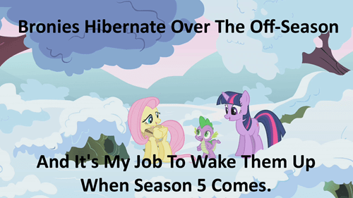 brony,fluttershy,winter wrap-up