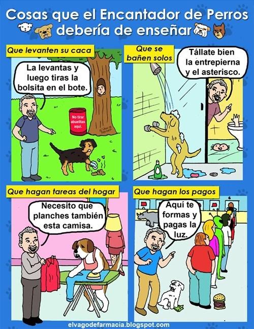 bromas viñetas perros animales - 8316667648