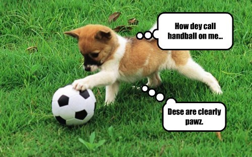 dogs soccer football - 8316783616