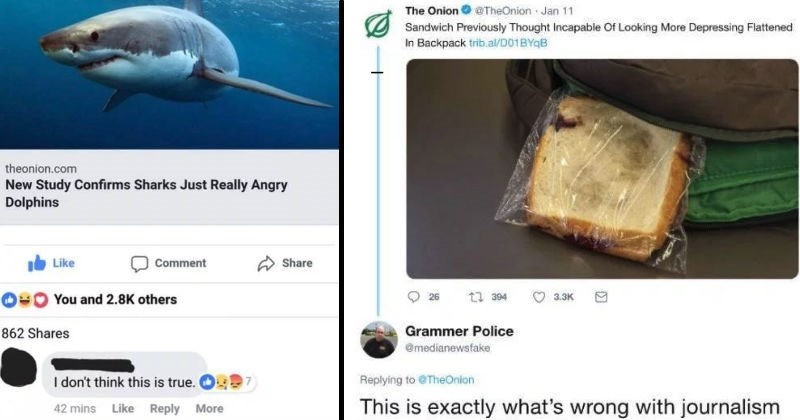 the onion facebook social media ridiculous reaction funny - 8316933