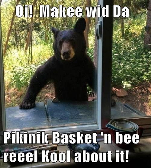 Oi! Makee wid Da Pikinik Basket 'n bee reeel Kool about it!