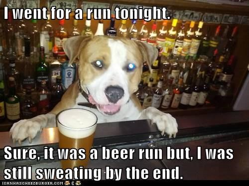 beer dogs bartender