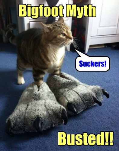 Cat - BigfootMyth Suckers! Busted!!