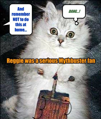 Cat - And remember NOT to do this at DANG...! home... Reggie wasa serious Mythbusterfan