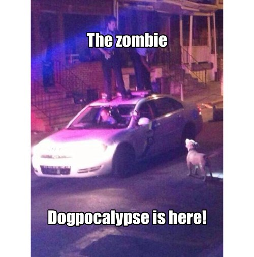 dogs zombie police - 8318910208