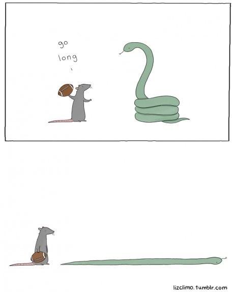 rats snakes football web comics - 8319129856