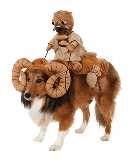 costume,dogs,star wars,poorly dressed,bantha