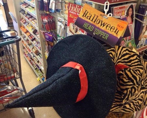 costume head topper poorly dressed halloween hat g rated - 8320118272