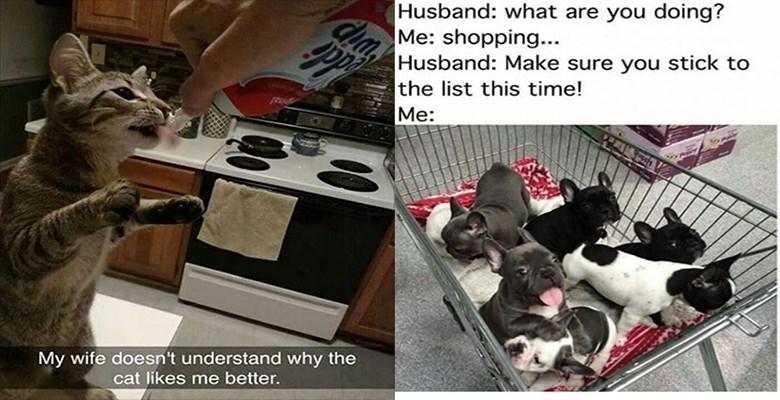 wife funny memes husband animal memes - 8320261