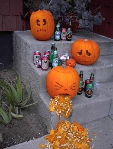 beer pumpkins drunk funny fall - 8320569344